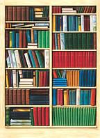 Фотошпалери на стіну Бібліотека, 183х254 см