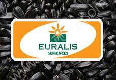 Семена подсолнечника Евралис (Euralis )