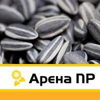 Сингента Арена ПР (syngenta)