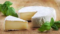 Комплект для сыра Камамбер