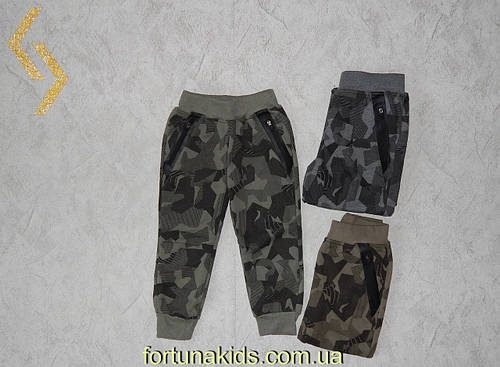 Утепленные спортивные брюки  для мальчиков F&D 1-5 лет