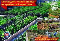 Дачники рассказали, как создать «умный огород», не требующий перекопок