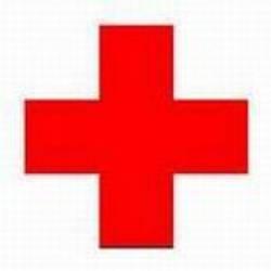 Домашняя ветеринарная аптечка первой помощи