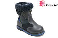 Зимняя обувь для мальчиков Calorie T0506-2180L (Размеры: 26-31)