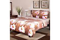 """Постельное белье """"Луиза"""" на двуспальную кровать евро размера"""