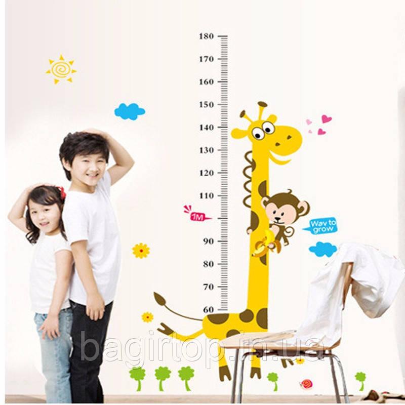 Інтер'єрна наклейка на стіну Ростомір жираф (AY7178)
