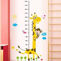 Детская  наклейка ростомер - жираф