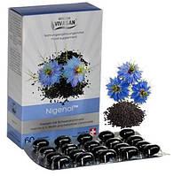 Нигенол / Nigenol (в капсулах), масло черного тмина, Вивасан