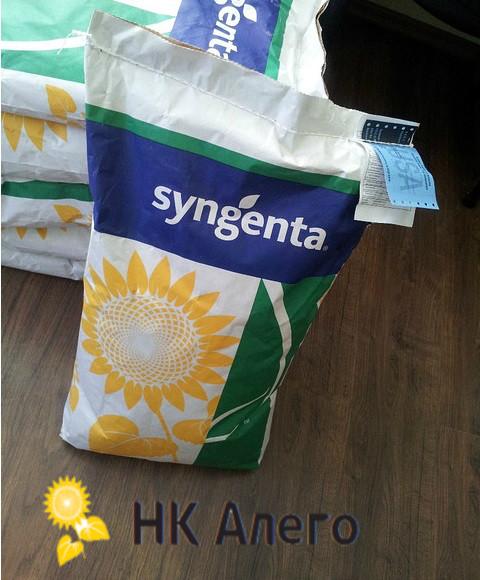 Семена подсолнечника НК Алего Syngenta