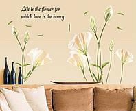 Интерьерная наклейка на стену Цветок лилии (AY9152)