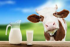 Оборудование для анализа качества молока