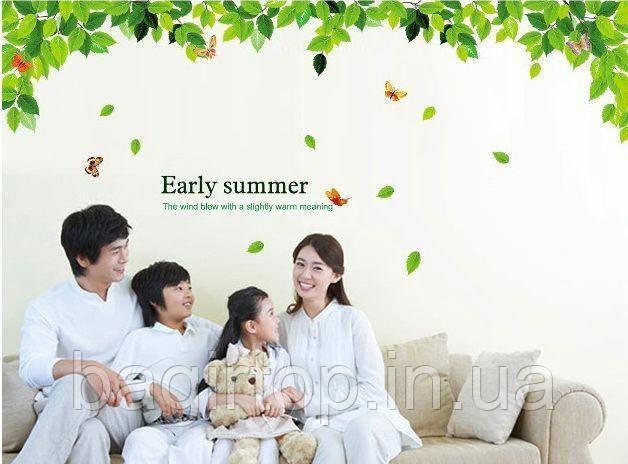 Интерьерная наклейка на стену Зеленые листья  (AM018)