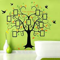 Интерьерная наклейка на стену Дерево Фоторамка (SK2010W)