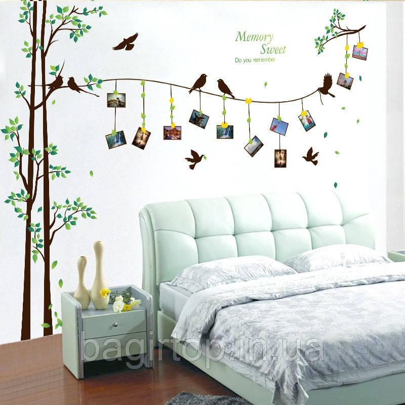 Интерьерная наклейка на стену Дерево и рамки (SK2007W)