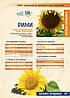 Семена подсолнечника Римми Юг Агролидер, фото 4
