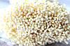 """Матові тичинки на нитці оптом, близько 1700-1800 шт кольору """"шампань"""" оптом"""