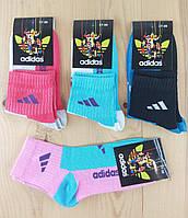 """Женские носки демисезонные стрейч """"Adidas"""" 37-39р.   NJD-02716"""