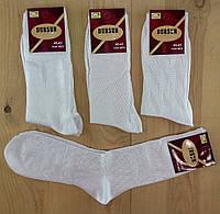 Носки мужские супер качество демисезонные шёлк  DURSUN Турция  40-43 размер белые NMP-23115