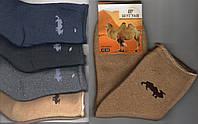 Носки мужские без резинки медицинские шерстяные с шерстью верблюда Шугуан, ассорти, 9821