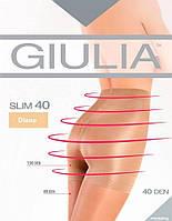 Колготки GIULIA SLIM 40 5 (XL) 40 FUMO (серый)