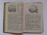 """С.Мінкін """"Посібник до практичних занять з топографічної анатомії і оперативної хірургії"""". 1936 рік, фото 4"""