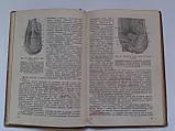 """С.Мінкін """"Посібник до практичних занять з топографічної анатомії і оперативної хірургії"""". 1936 рік, фото 6"""