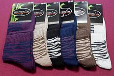 Носки Monteks ликра женские цветные ЭКОНОМ 2 36-40 ( 23-26 ) женские