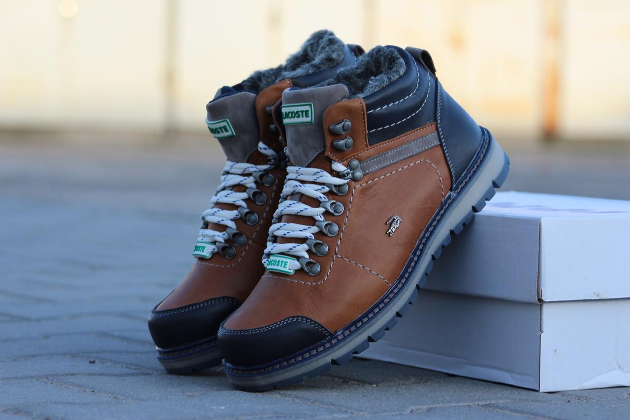 Мужские зимние ботинки Lacoste кожаные (Реплика ААА+) - купить по ... 8afa9569902