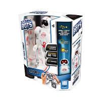 Игрушка интерактивный робот Шпион Blue Rocket (XT30038)