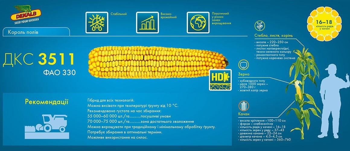 Семена кукурузы DKC 3511 / ДКC 3511(Мonsanto)