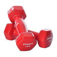 Гантели для фитнеса с виниловым покрытием Profi 0289 по 1 кг (общий вес 2 кг)