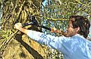 Контактный веткорез Fiskars с храповым механизмом (112850), фото 3