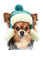 Шапка зимняя Ушанка S для собаки (23-25 см, 2,5-4,5 кг), цвета разные