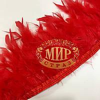 Тесьма перьевая из перьев индюка, цвет Red, цена за 0.5м
