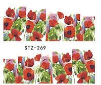 Слайд для дизайна ногтей STZ-269