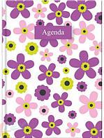 """Ежедневник\щоденник недатированый А5 Violet, серия """"Агенда"""" """"Brunnen"""""""