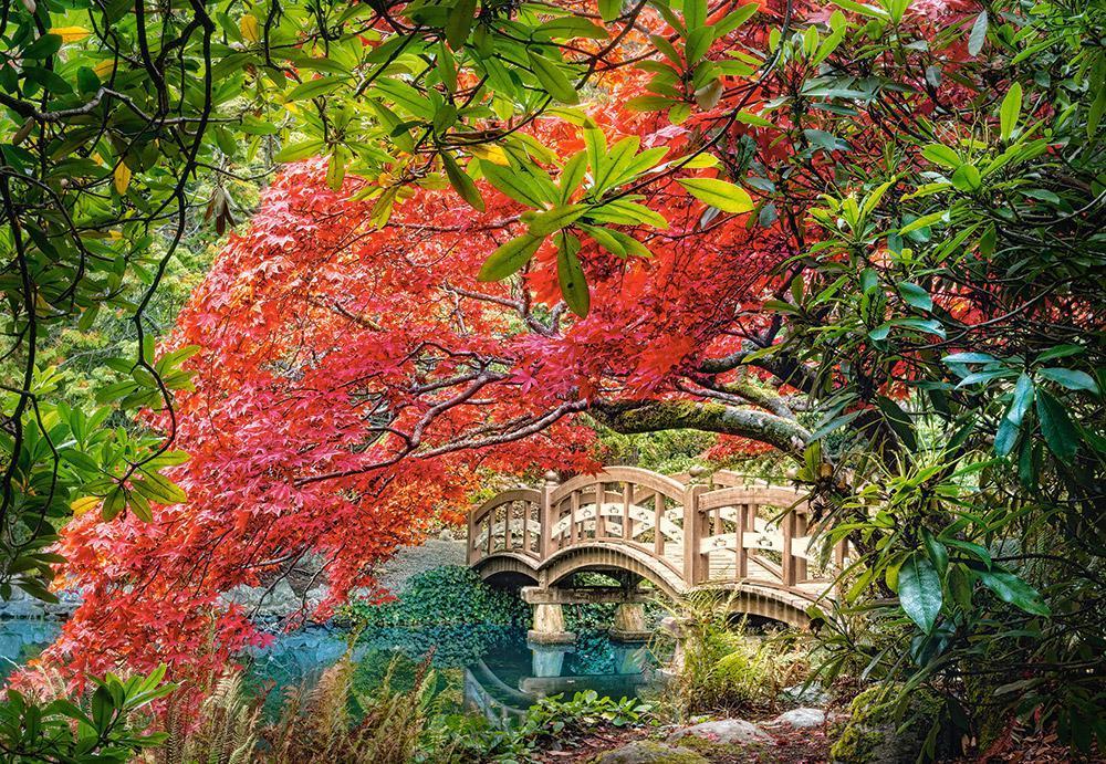 Пазлы Castorland С-103768, Японский сад, 1000 элементов