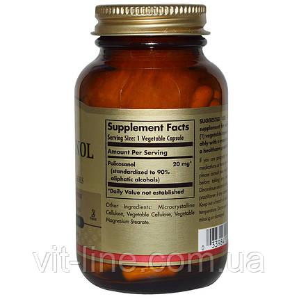 Solgar, Поликосанол, 20 мг, 100 вегетарианских капсул, фото 2