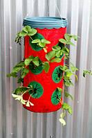 Приспособление для выращивания клубники