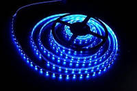 LED 3528 Blue 60RW (синяя) за 1 метр