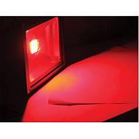 Светодиодный прожектор LED 50Вт 620-630nm (красный), IP66