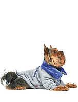 Толстовка для собаки Фред M Длина спины 33-36, обхват груди 41-48 см (цвета разные)