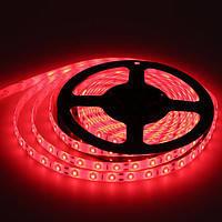 Светодиодная лента 5050 (LED лента) КРАСНЫЙ