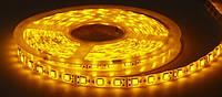 Светодиодная лента 5050 (LED лента) ЖЕЛТЫЙ