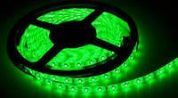 Светодиодная лента LED 3528 (LED лента) 60RW (100) ЗЕЛЕНЫЙ