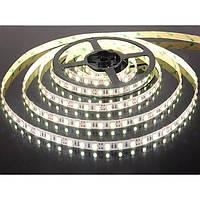 Светодиодная лента LED 3528 (LED лента) 60RW (100) БЕЛЫЙ