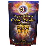 Earth Circle Organics, Органический балийский какао-порошок, 8 унций (227 г)