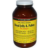 Y.S. Eco Bee Farms, Маточное молочко и пыльца в основе из меда, 24 унции (680 г)