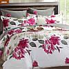 Комплект постельного белья размер семья, семейный Viluta ткань Ранфорс арт. 2009