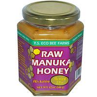Y.S. Eco Bee Farms, Лесной мед манука, Актив 15+, 12 унций (340 г)